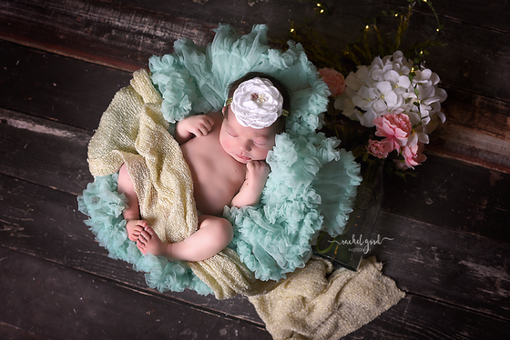 Introducing Reese. Short and Sweet Newborn session; Berea, OH