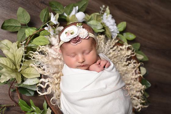 Meet Aubree. Short and sweet newborn session. Brookpark, OH Photographer