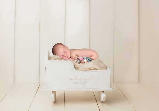 Braelyn's Elite Newborn Session. 16 days new.