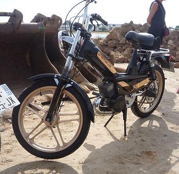 P1130590.JPG