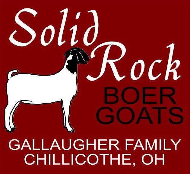 Boer Bucks | Solid Rock Boer Goats