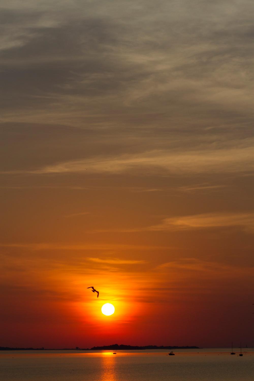 Sunrise over Wollaston Beach