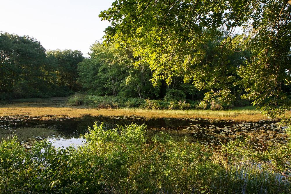 Stenger Farm Park