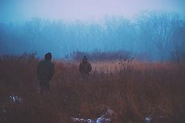 marche dans les bois à l'aube
