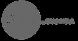 LOGO DLYTE  GRISS-01.png