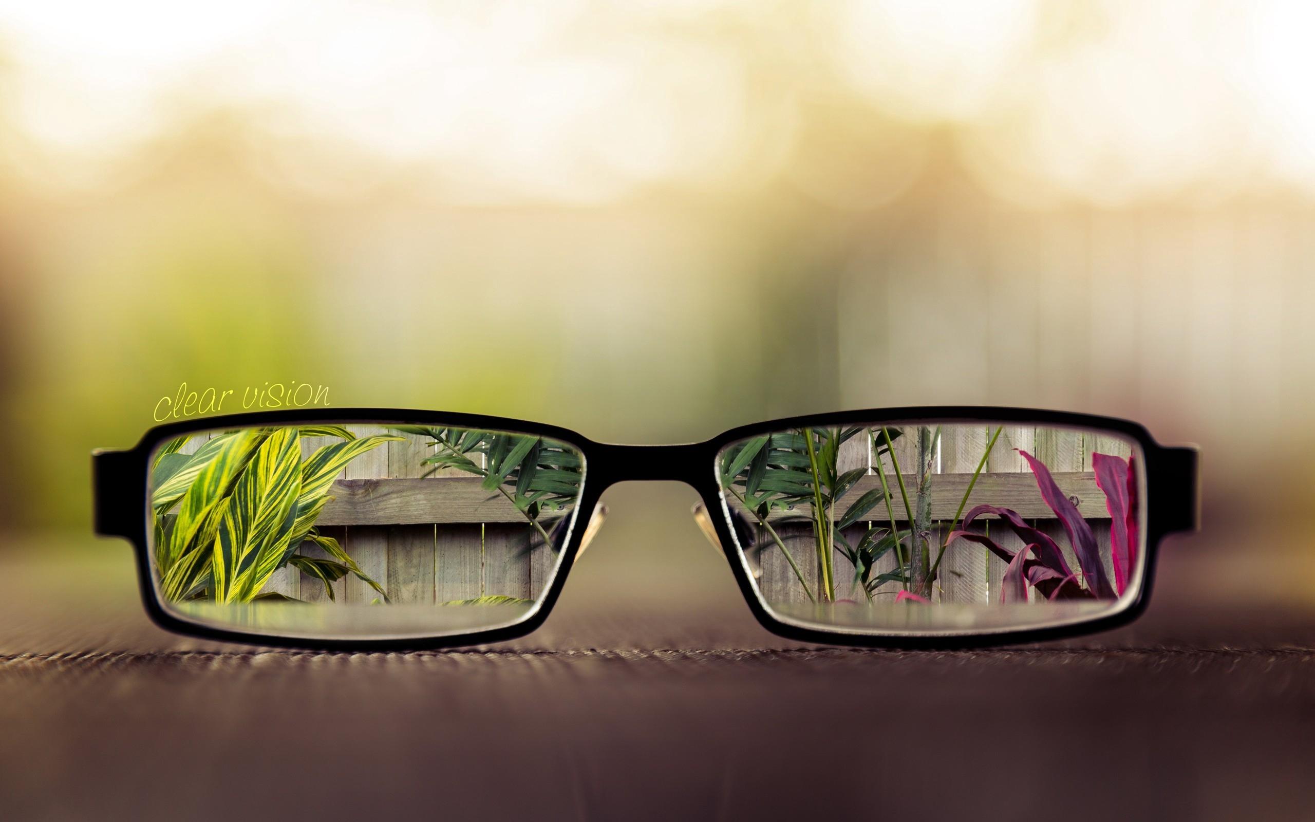 Optic 2