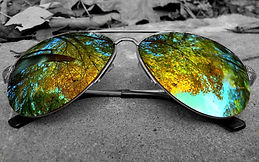 glasses_glass_green_reflection_sunny_771