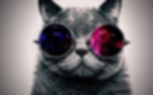 cat_face_glasses_thick_65455_1920x1200.j