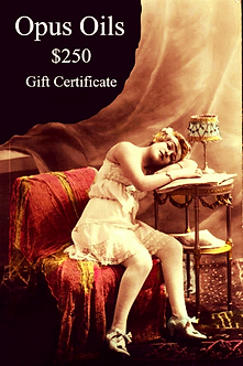 $250 Gift Certificate for only $200
