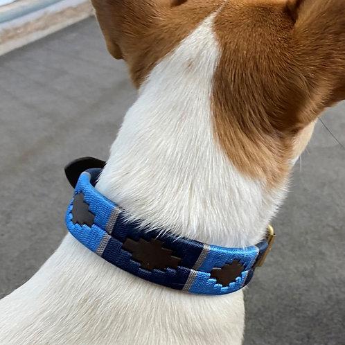 Polo Dog Collars