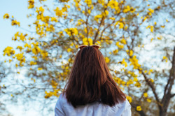 young woman looking at a tree