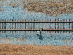 Walking along the railroad (1)