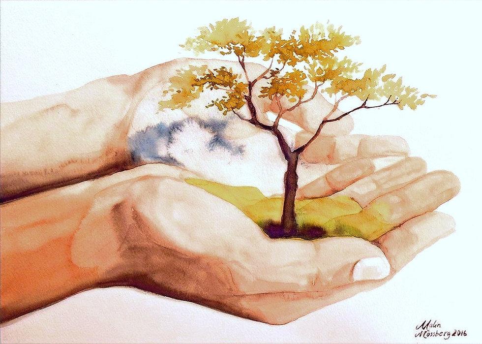 TreeOfLife_creditMalinMossberg_edited_edited_edited_edited_edited.jpg
