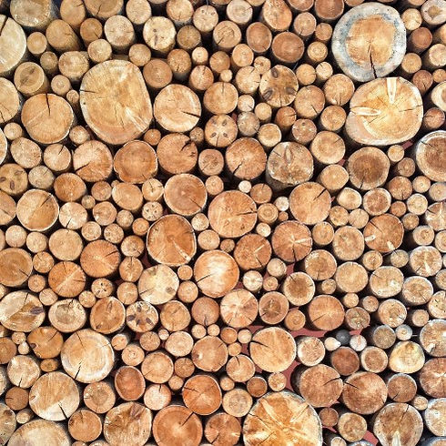 brown-wood-trunk-stack-log-pieces-round-