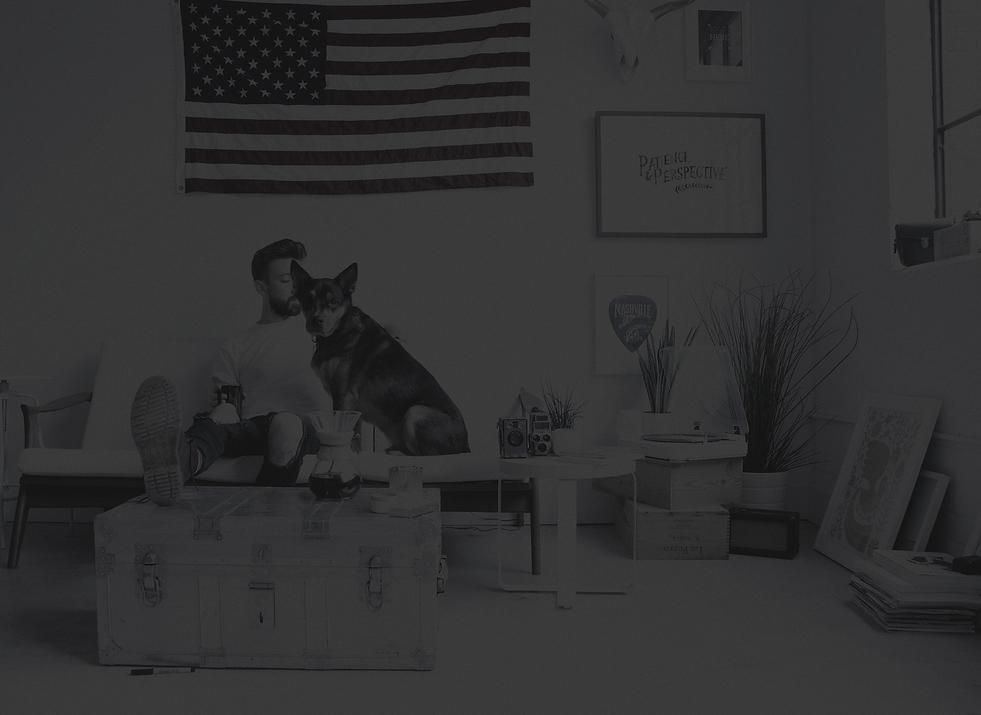 dog-white-bright-interior-urban-apartmen