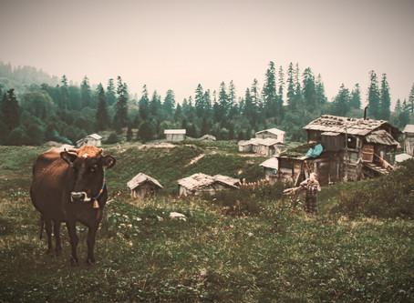 Öykü- Fatma Esin Kalyoncu- Arada