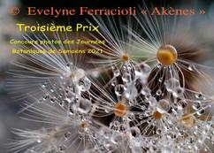 La Troisième : Akènes de  Evelyne Ferrac