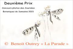 Le Deuxième : La Parade de Benoit Outrey