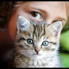 Nj et son petit chat