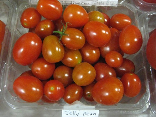 Jelly Bean Tomato