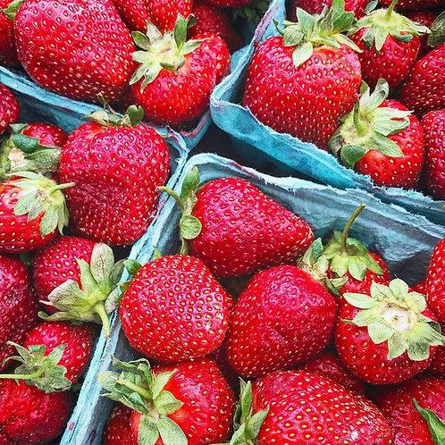 Organic Chocolate Covered Strawberries