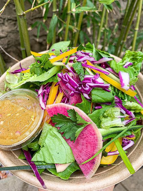Organic Spring Herb Salad