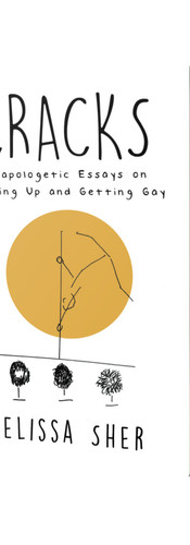 Cracks:Unapologetic Essays on Growing Up and Getting Gay