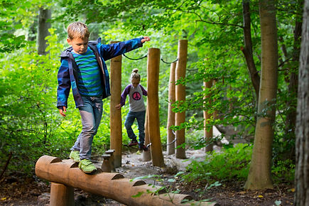nature-play-ambient-2.jpg