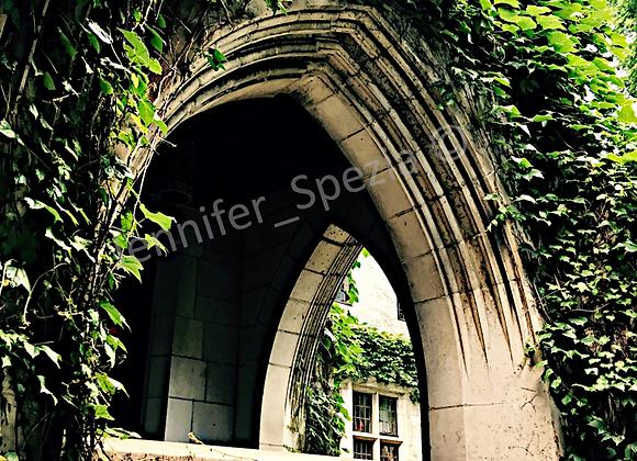 Vine Arch