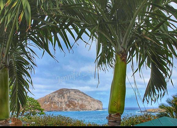 Hawaii 5 0