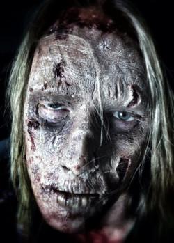 Zombie Crawl 2013