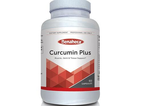 Curcumin Plus 姜黄素