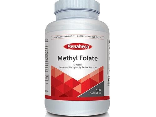 Methyl Folate 甲基叶酸