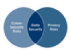 Data Security - Privacy Risks