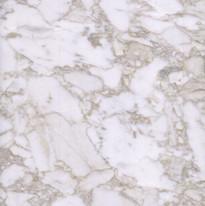 Bianco Arabescato Marble