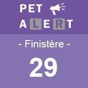PET ALERT 29:  Animaux perdus, aperçus, trouvés