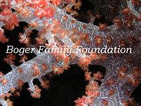 Boger Family Foundation Logo.jpg