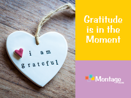Gratitude is in the Moment