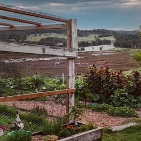kitchen-garden-long-south-coast-tour-ull