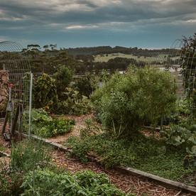 kitchen-garden-long.jpg
