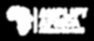 AmplifyAfrica_Logo-05.png