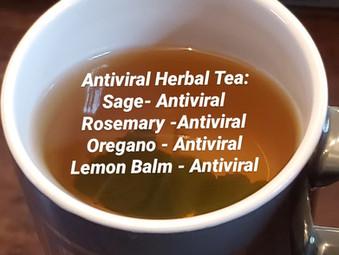 T's AntiViral TEA
