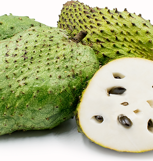 Soursop-4.png