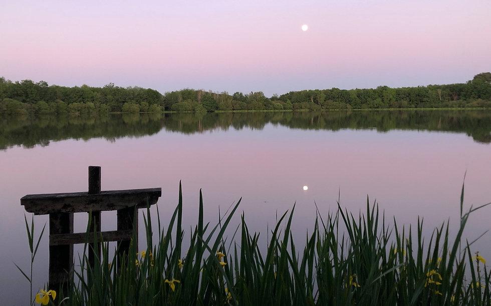 Les étangs de Sologne