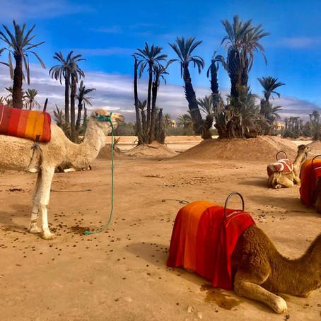 Un week-end à Marrakech ?