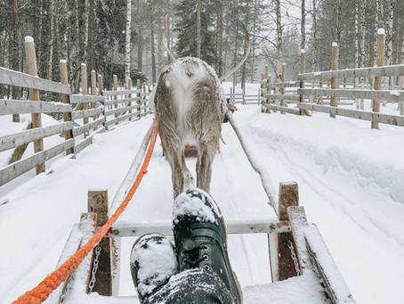 Itinéraire et programme d'une semaine en Laponie