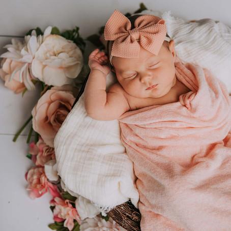 Baby Willow's First Portraits   Hazard, KY   Kentucky Newborn Photographer