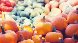 5 ways to recycle your pumpkin