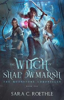 1 The Witch of Shadowmarsh front cover.j
