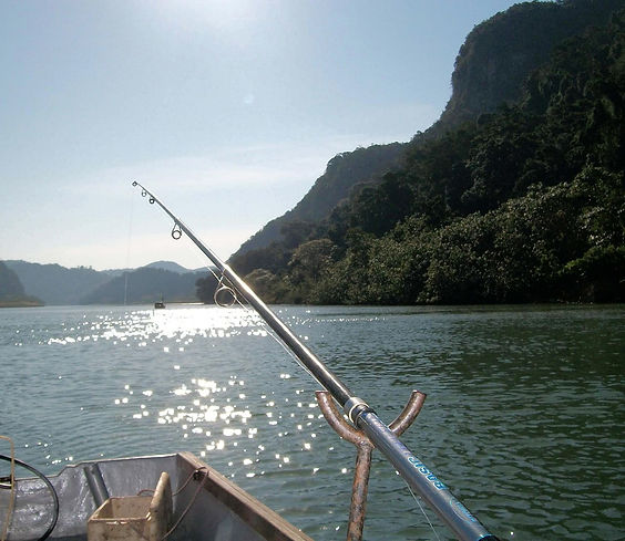 Fishing on the beautiful Umzimvubu river on a sunny morning at Purple Indigo apartments